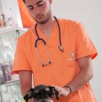 Practicas-Curso-Auxiliar-Veterinaria-45