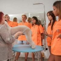 Practicas-Curso-Peluqueria-Canina-18-580x385