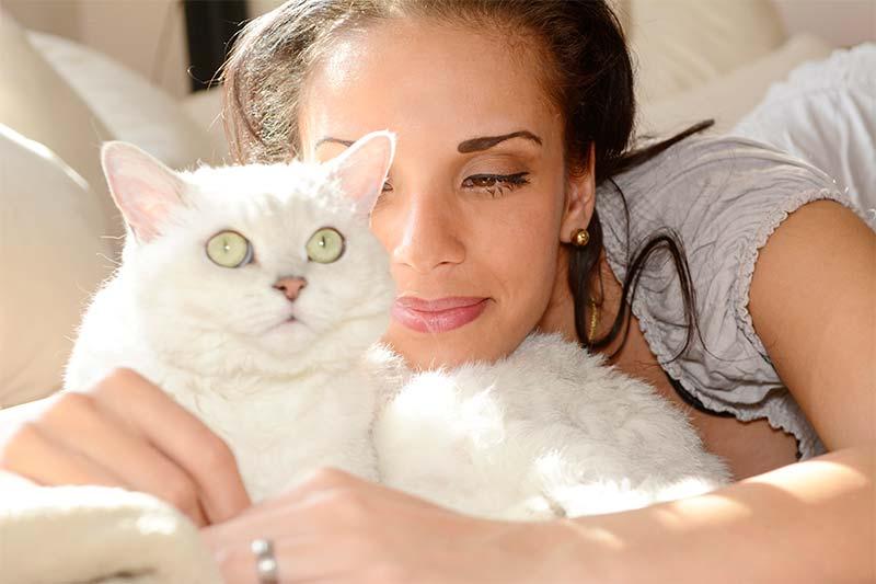 Cuidados de los Gatos - TOP aul@ Salud