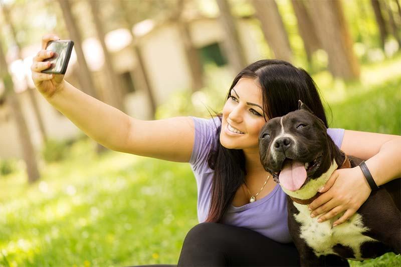 Lenguaje corporal en perros - TOP aul@ Salud Veterinaria