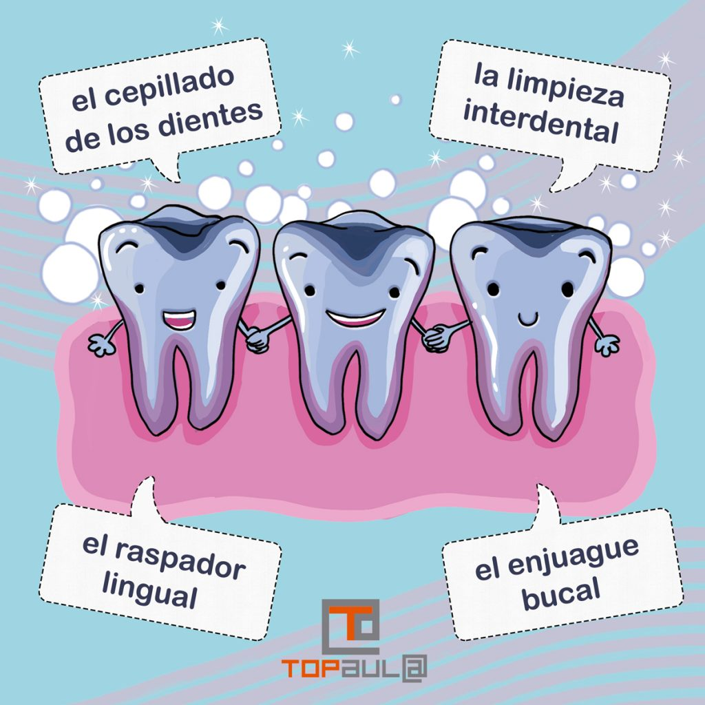 Infografía ¿Cómo realizar una correcta higiene dental? - www.topaulasalud.com