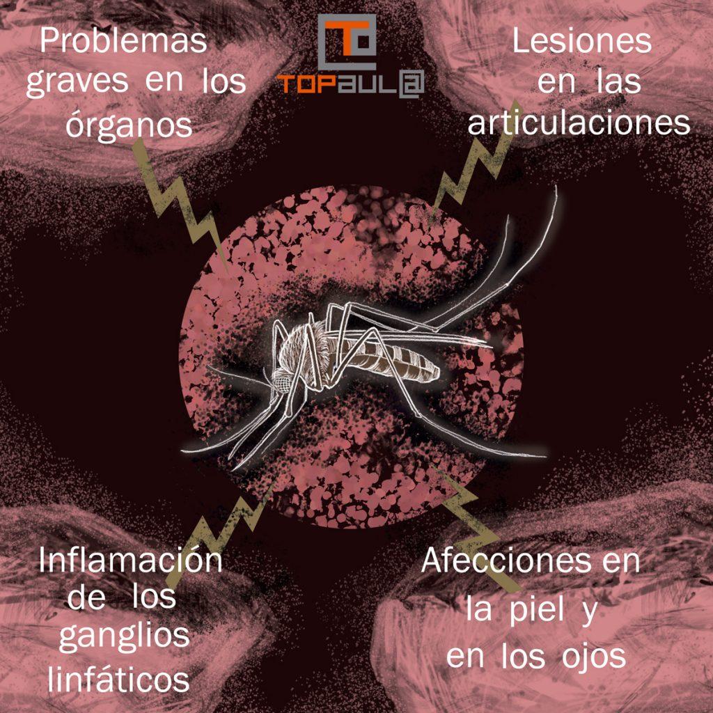 Infografía ¿Qué hago si mi perro tiene leishmaniasis? - www.topaulasalud.com
