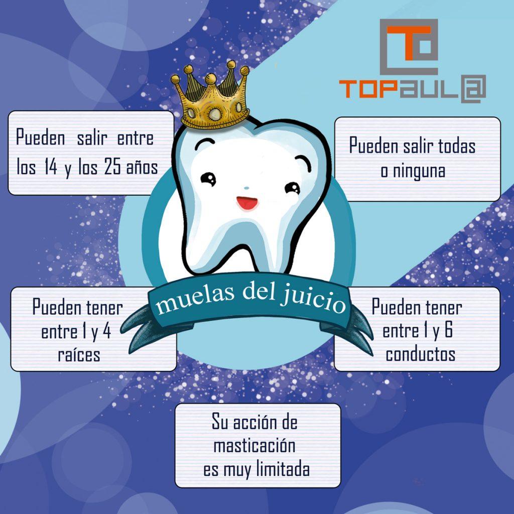 Infografía ¿Debo quitarme las muelas de juicio? - www.topaulasalud.com