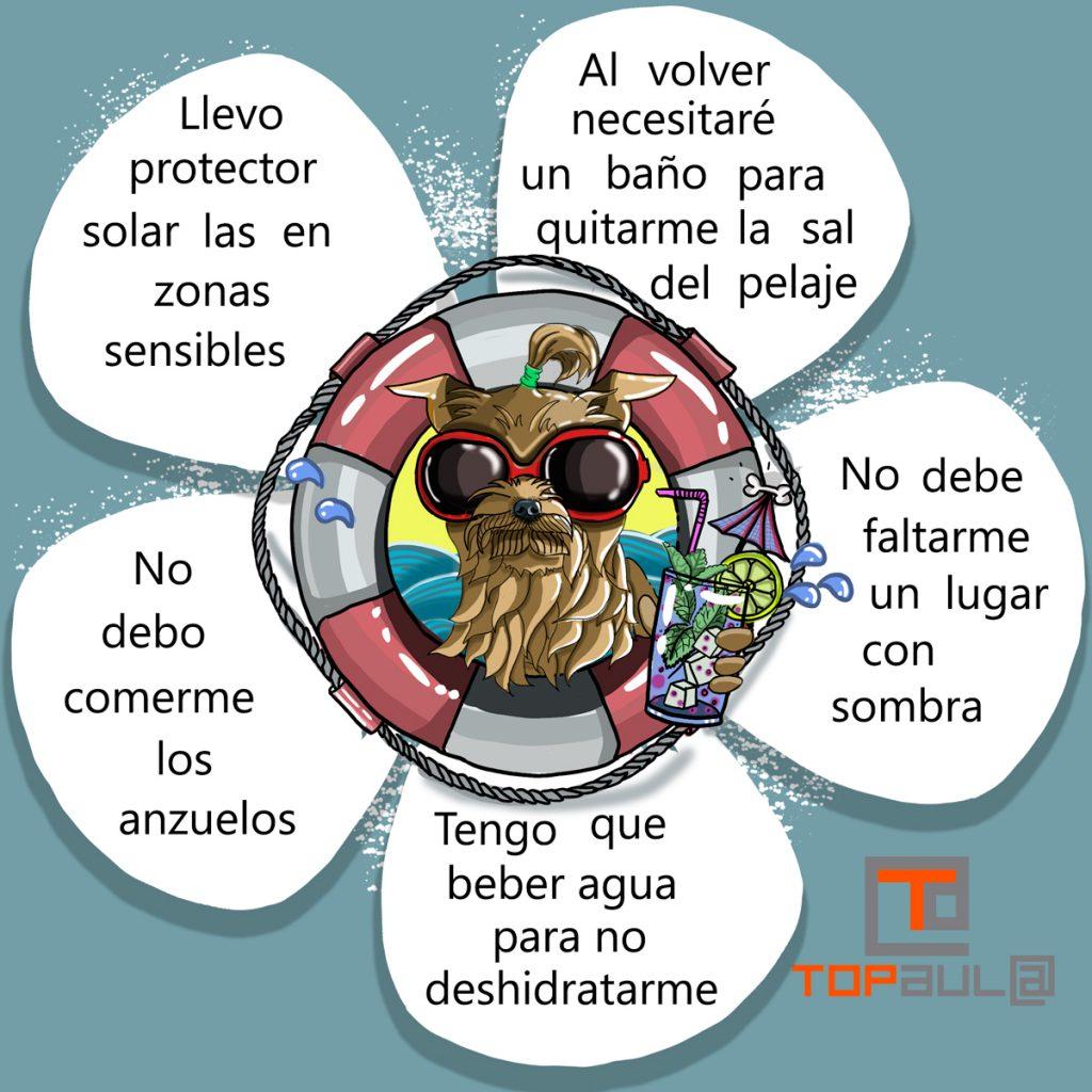 Infografía ¿Puedo llevar a mi perro a la playa? - www.topaulasalud.com