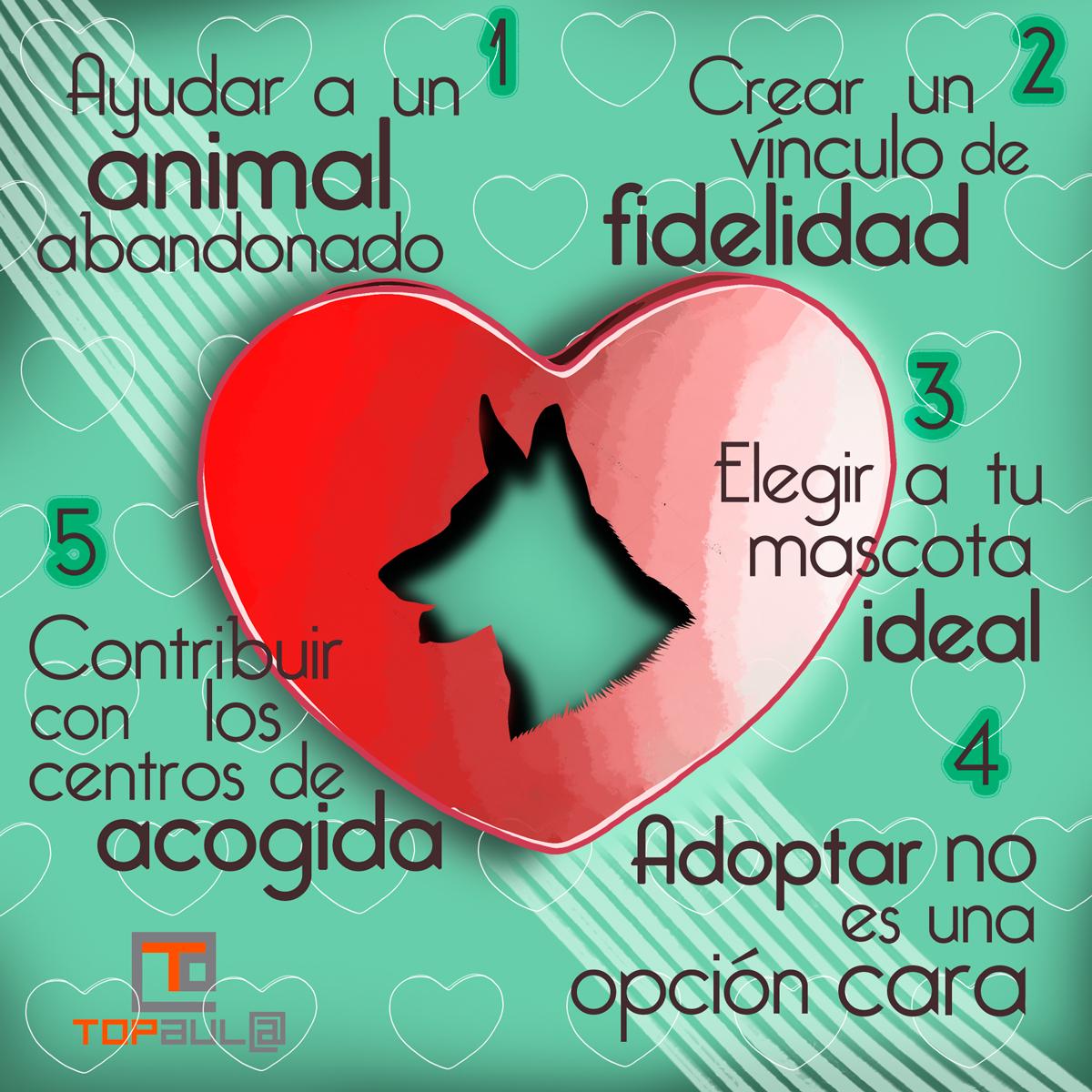 Infografia 5 motivos para adoptar a una mascota - www.topaulasalud.com
