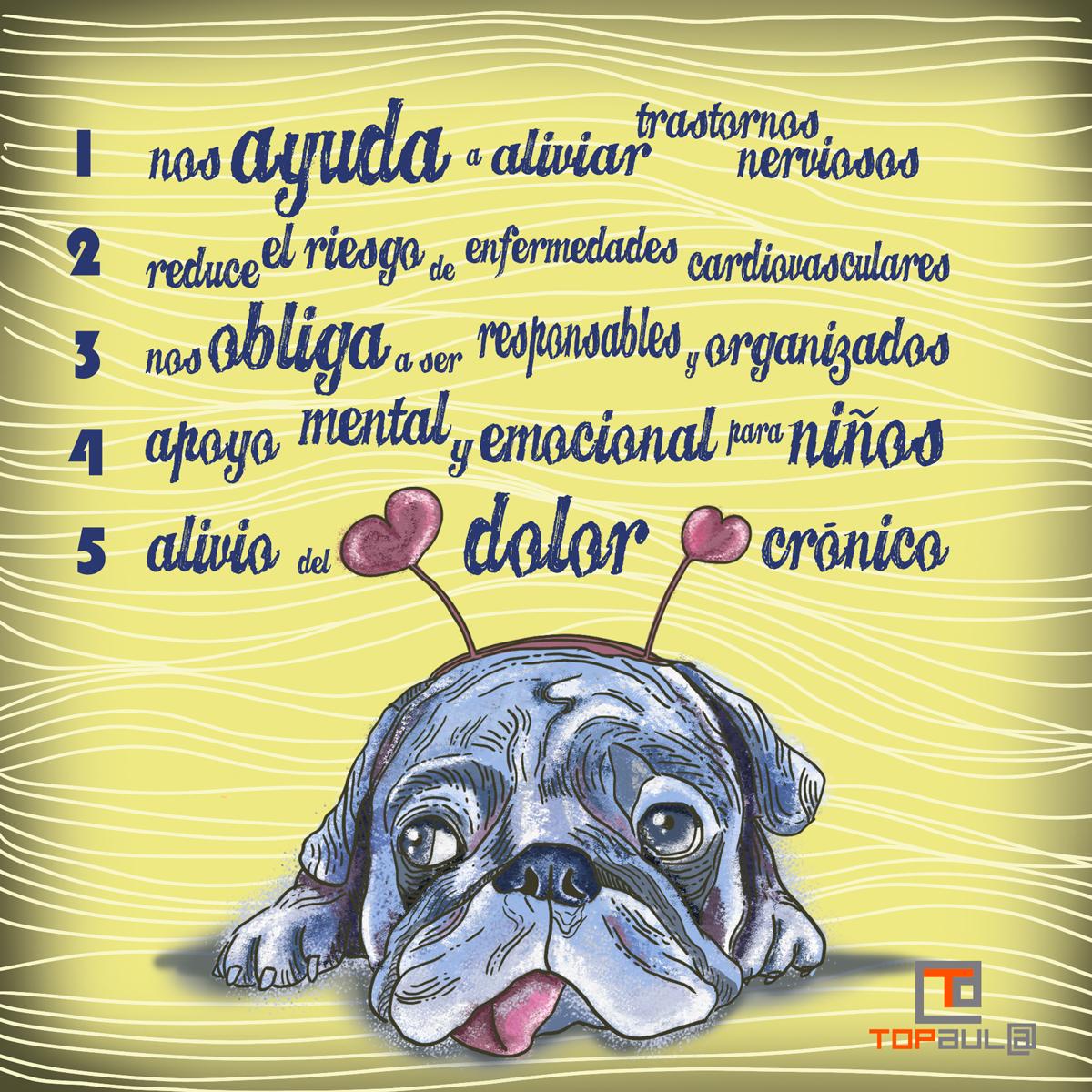 Infografía ¿Qué beneficios nos aporta nuestra mascota para la salud? - www.topaula.com