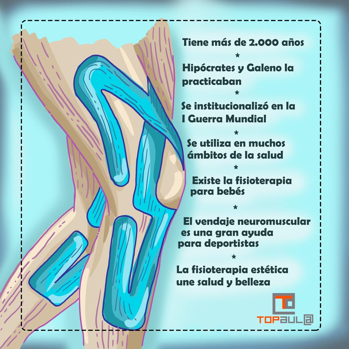 Infografía 6 curiosidades sobre la fisioterapia - www.topaulasalud.com