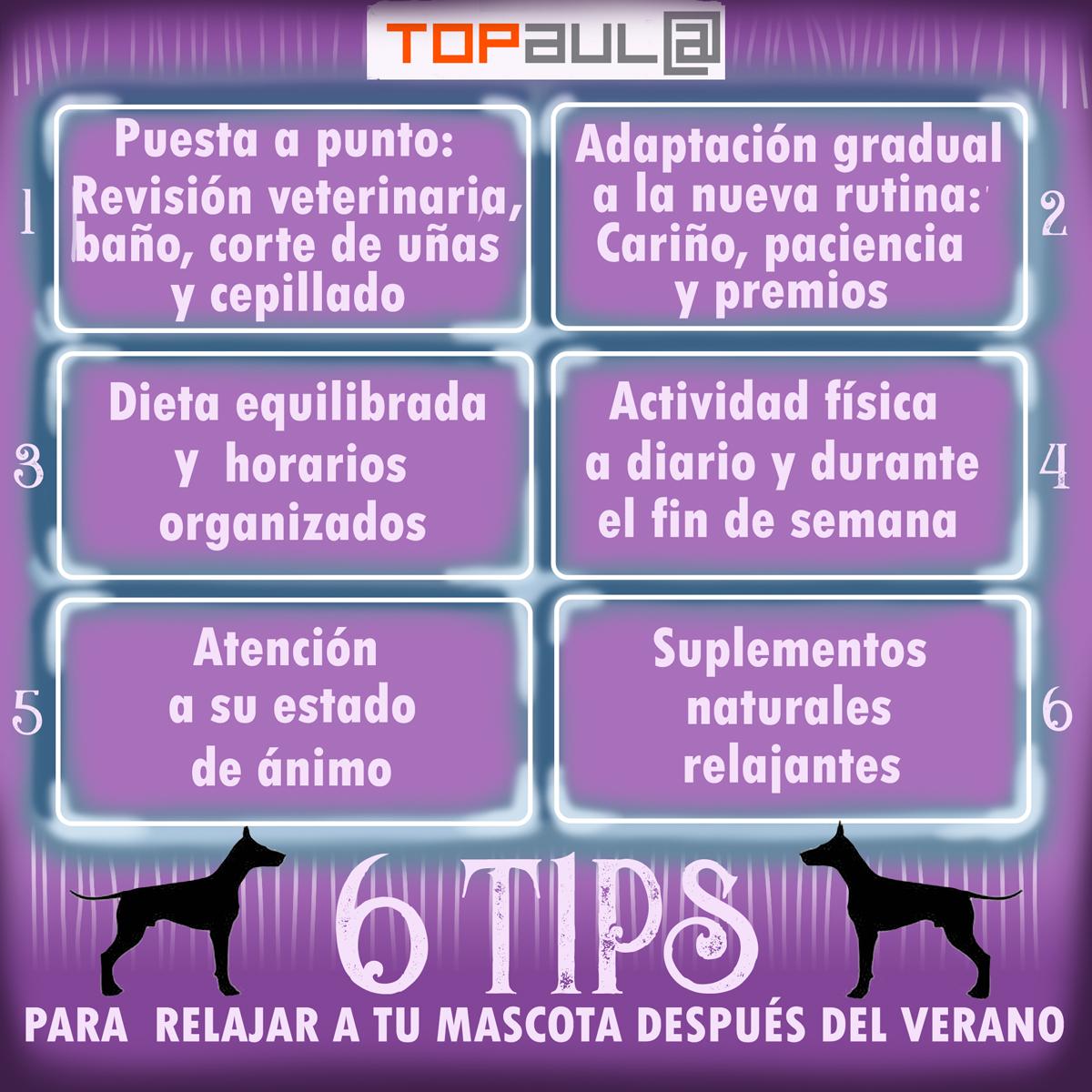 Infografia 6 tips para relajar a tu mascota después del verano - www.topaula.com