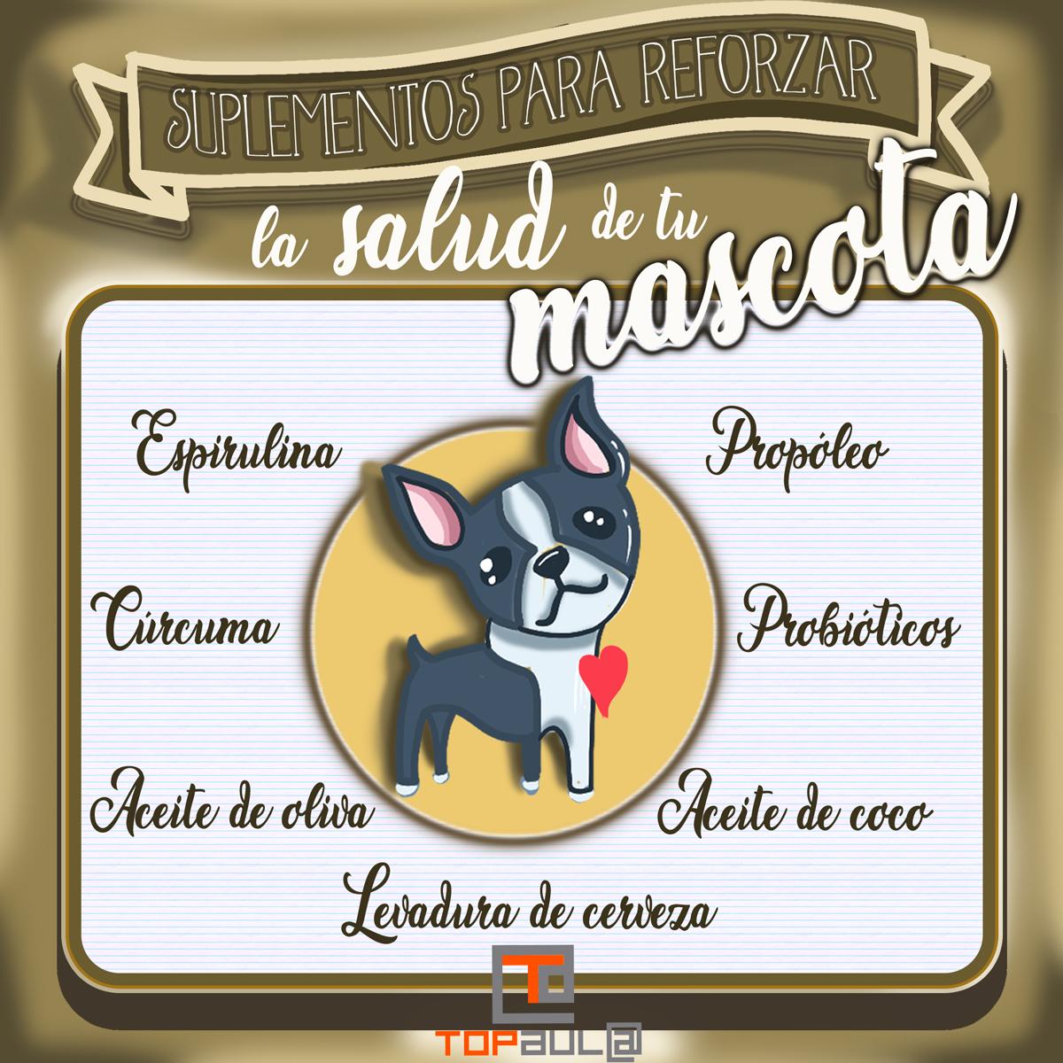 Infografía Suplementos que le puedes dar a tu mascota para reforzar su salud - www.topaulasalud.com