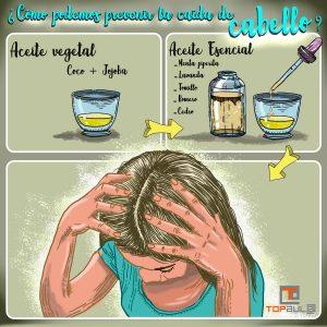 Infografía ¿Cómo podemos prevenir la caída de cabello? - www.topaula.com