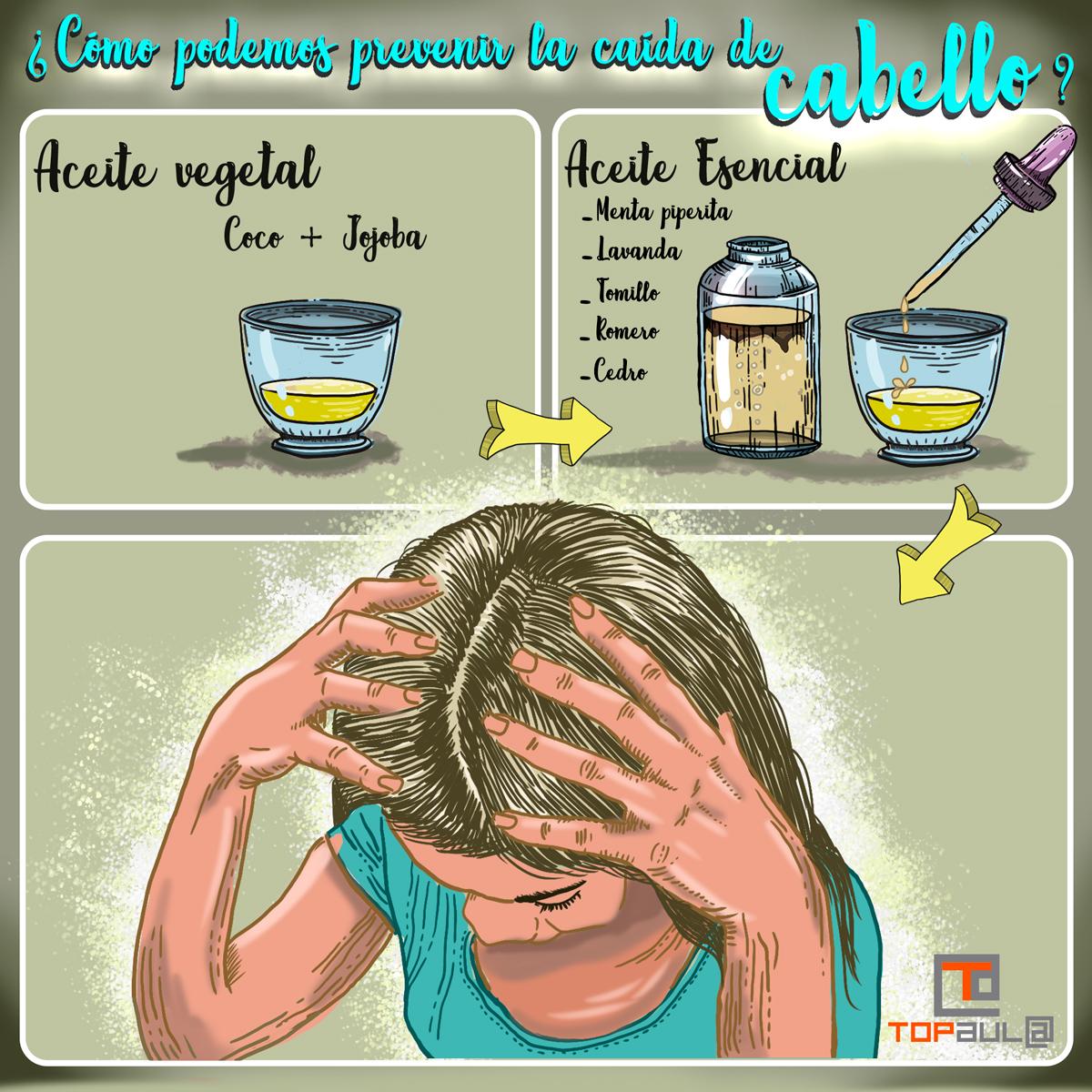 Infografía ¿Cómo podemos prevenir la caída de cabello? - www.topaulasalud.com