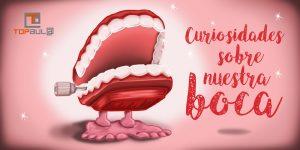 Curiosidades sobre nuestra boca - www.topaula.com