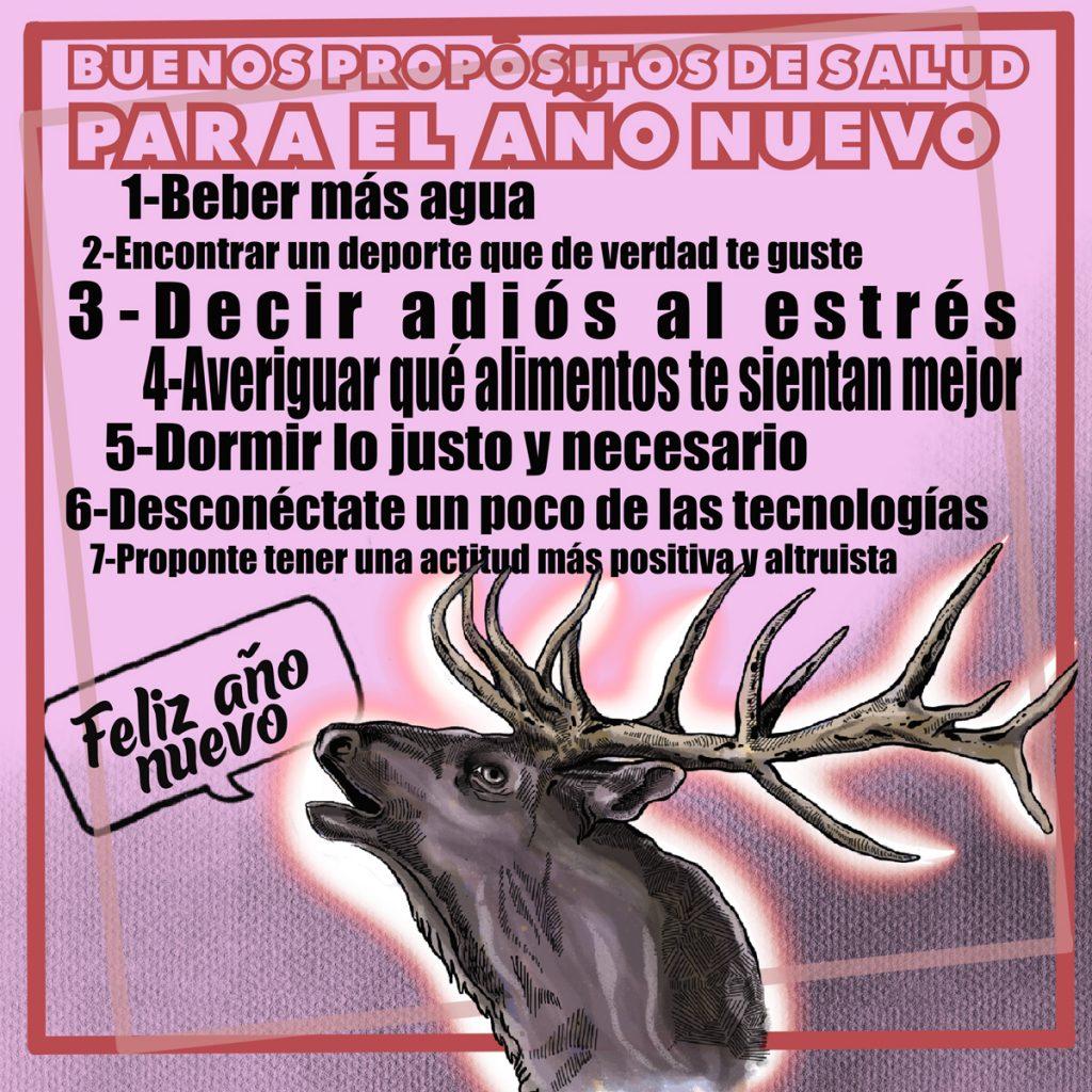 Infografía Buenos propósitos de salud para el año nuevo - www.topaula.com