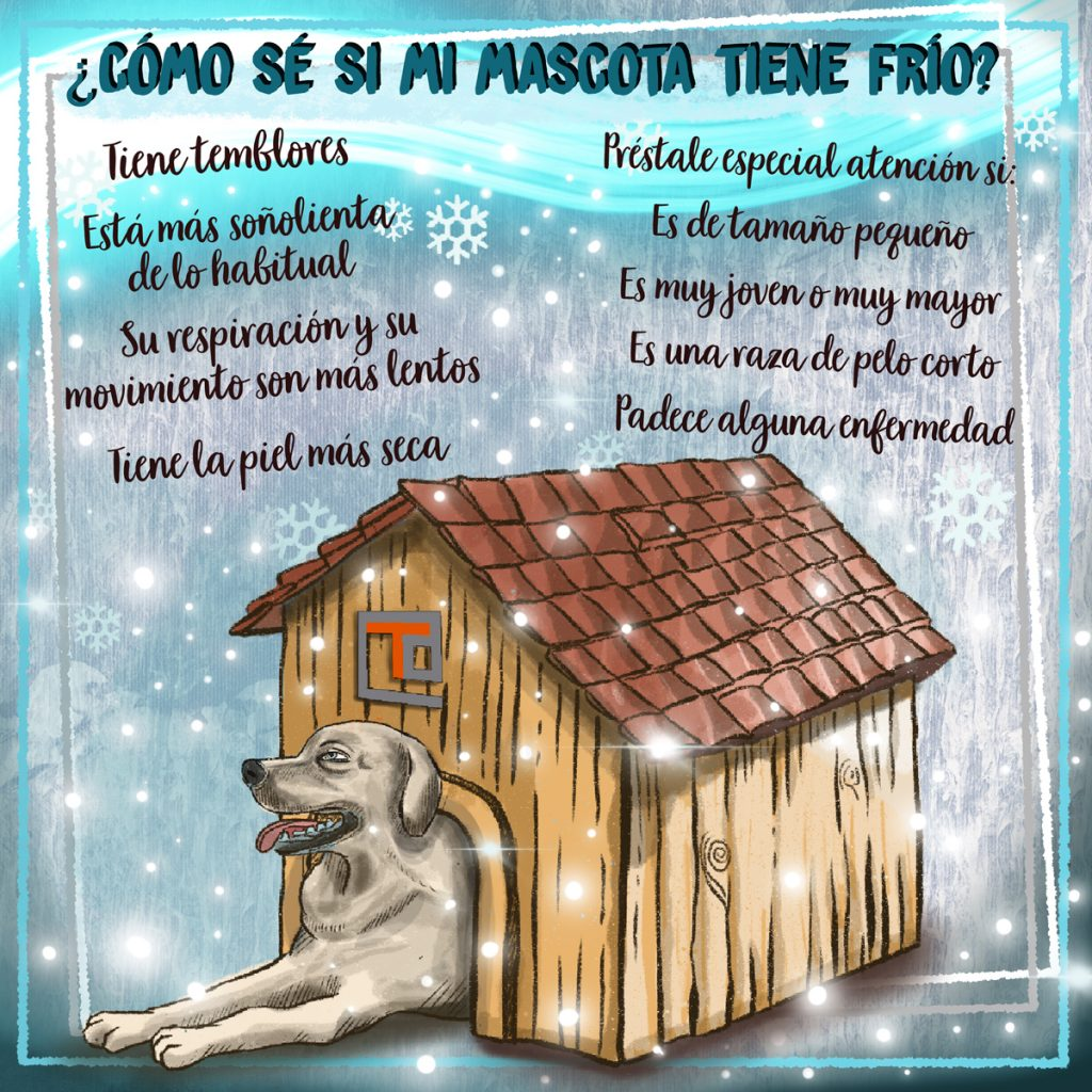 Infografía Como proteger a nuestra mascota del frío - www.topaula.com