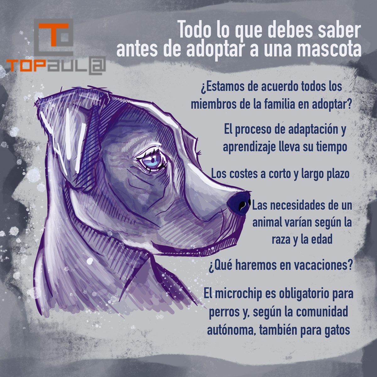 Infografía Todo lo que debes saber antes de adoptar a una mascota - www.topaula.com