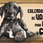 Calendario anual de vacunas para perros y gatos - www.topaula.com