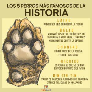 Infografía - Conoces a los 5 perros más famosos de la historia - www.topaula.com