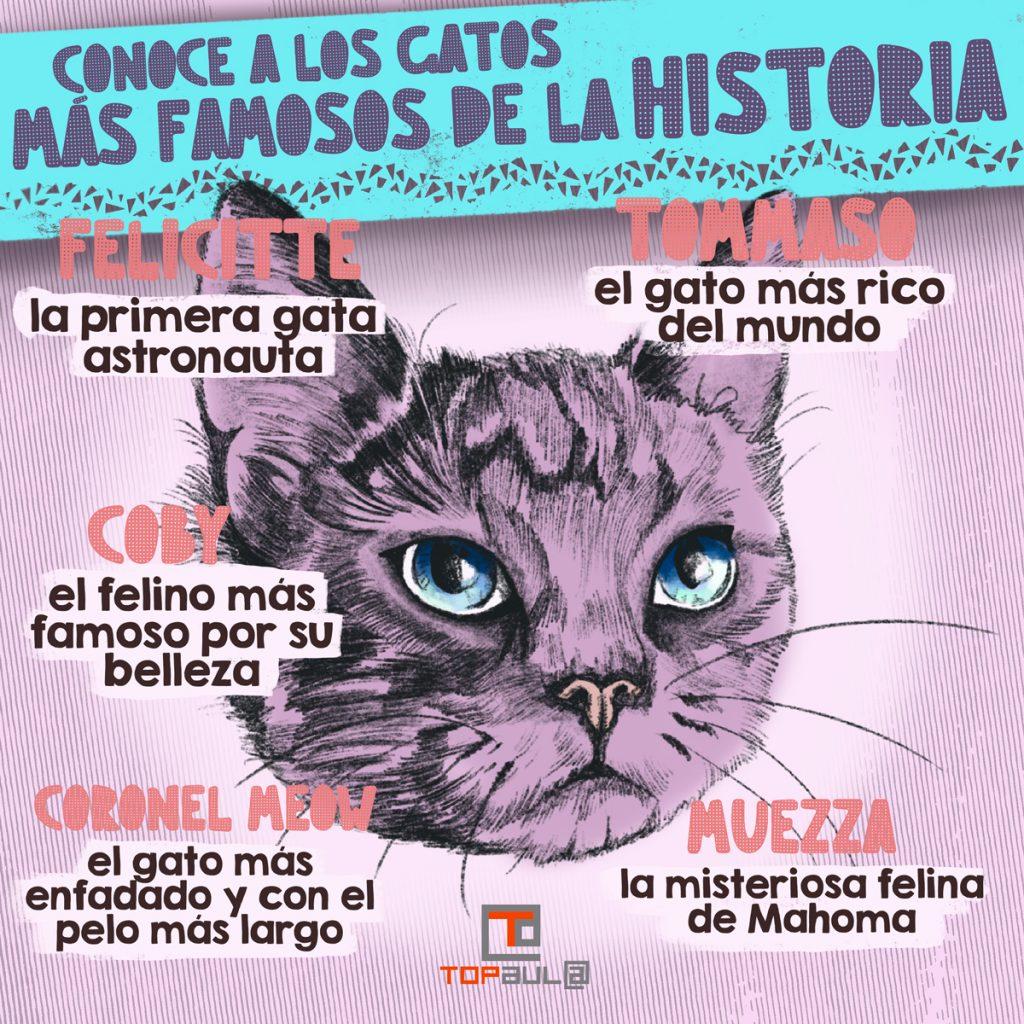 Infografía - Conoce a los gatos más famosos de la historia - www.topaula.com