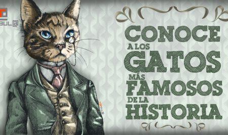 Conoce a los gatos más famosos de la historia
